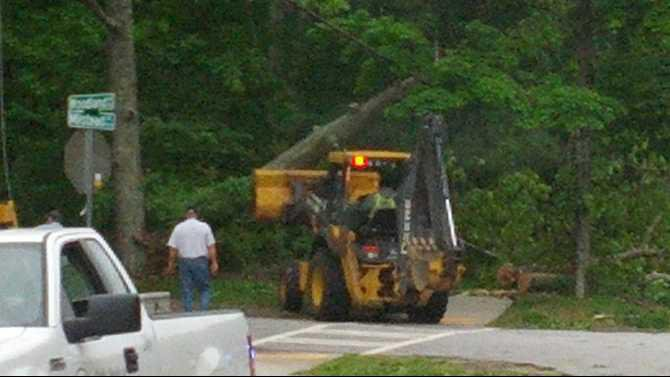 tree-clearing-on-Milstead-Ave-4-30-174-IMG 20140430 080500