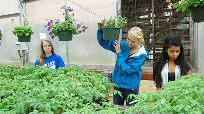 4-22-13-RCAs-Basic-Agriculture-students-GraceAnne-Dukes-Alexis-Nation-and-Kersten-Buchanan-JS