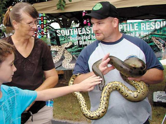 Wildlife-fest-Holding-Snake